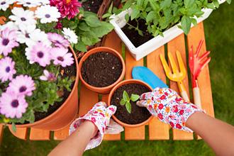Leichte Gartenarbeit lindert chronische Schmerzen und ist damit eine gute zusätzliche Behandlung, um Schmerzen zu bewältigen.